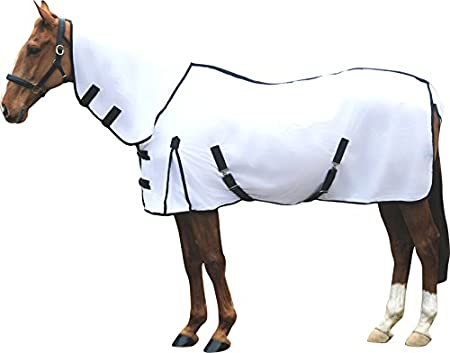 IV Horse After Bath Robe Horse Rug 50