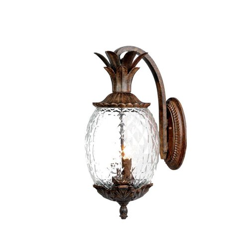 Acclaim 7502BC Lanai Collection 2-Light Wall Mount Outdoor Light Fixture, Black Coral Review