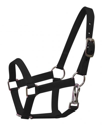 Showman Nylon Small Pony Halter with Nickel Plated Hardware and Throat Latch (Black)