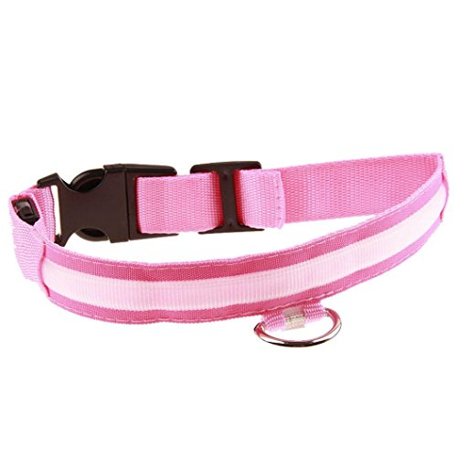 Pet collars LED Collars Dog JOYFEEL Night Safety Bright Flashing Cat Necklace Hot Puppies Harness Head Adjuatable Collar (M, Pink)