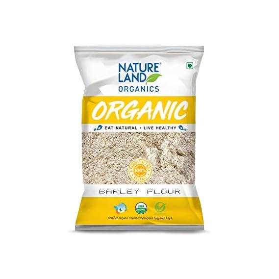 Natureland Organic Barley Flour / Jau Flour 500 Gm - Healthy Organic Flour