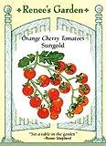 Tomato, Cherry, Sungold, Orange