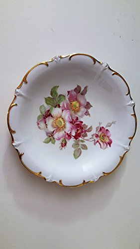 Bavaria Schumann Arzberg Germany Wild Rose Plate