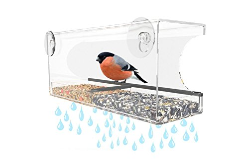 AX Fashions Acrylic Bird Feeder Hanger with 2 Extra Suction Cups - Hanging Two Portion Seed Tray + Drain Holes Bird Houses for Outside - Best Feeders for Wild Birds, Finch, Cardinal, Bluebird