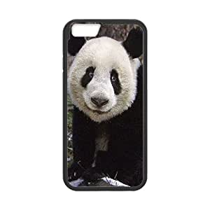 """AKERCY Lovely Panada Phone Case For iPhone 6 Plus (5.5"""") [Pattern-1]"""