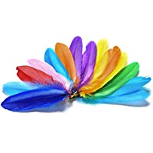 Piokio 300 Pcs Colored Feathers Bulk Wholesale Assorted Feathers for Craft, Wedding, Home, Party Decoration