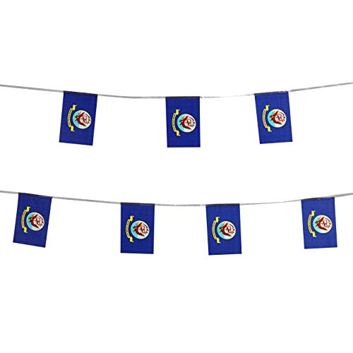TSMD 100 Feet US Navy Flag Small Mini United States Military Polyester Flags Banner,Decorations Supplies for Army Party Events Celebration
