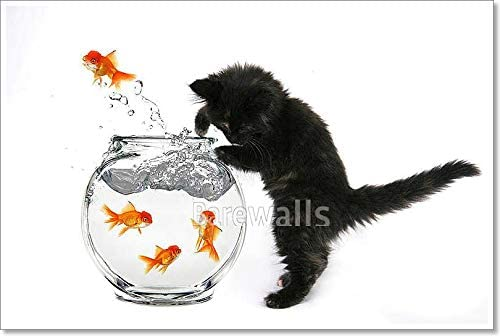 Framed Print Goldfish Jumping from Bowl to Bowl Picture Poster Art Fish