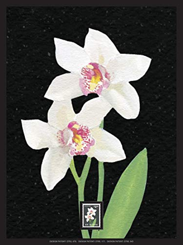 - Imperial Mint Orchid 231312SH03 Framed Wall Art, Multicolor