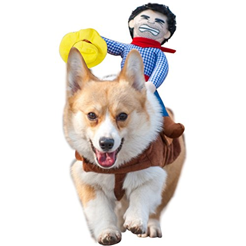 NACOCO Cowboy Rider Dog Costume for Dogs Clothes Knight Style with Doll and Hat for Halloween Day Pet Costume (L) (Dinosaur With Horn On Back Of Head)