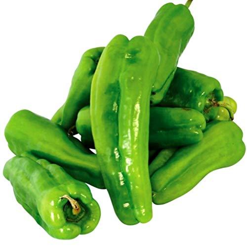 Cubanelle Pepper - Sweet Cubanelle Pepper Seeds for Growing Mild Cuban Heirloom Chili #315C (25 Seeds)
