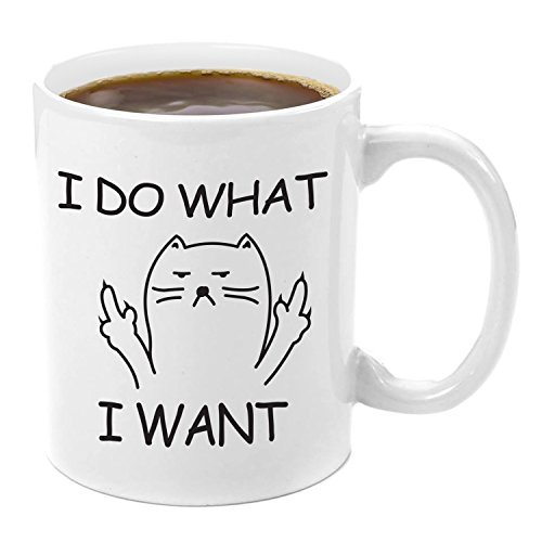 I Don't Care Grumpy Cat | Premium 11oz Coffee Mug Gift Set - Kitty Mug Gift Set, Mugs With Funny Cat Sayings, Give me your Milk, Your Cat The Boss Coffee, Birthday Surprise, Cat Lover, Movie Lovers