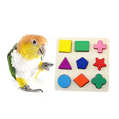 MrliPet Parrot Intelligence Training Toys DIY Wood Color Puzzle Toys Bird Cage Accessories for Macaw African Greys Budgies Parakeet Cockatiels Conure Macaw Lovebird - Foot Bird Block