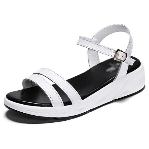 60% de descuento ZCJB Sandalias De Verano Zapatos Planos De Mujer Sandalias  Romanas Zapatos De 08dd78cf274e