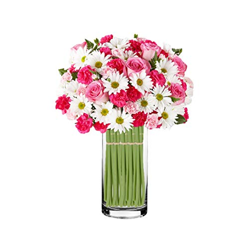 CYS EXCEL Pack of 1-Glass Cylinder Vase, Floating Candle Holders, Flower vase, Decorative Centerpiece for Home or Wedding, Thickness 1/4th (4