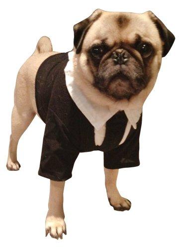 Amazon.com Pet Men In Black II Dog Costume For Medium Dogs