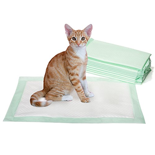 Disposable Cat (GOBUDDY Odor Reducing Disposable Super Absorbent Cat Litter Box Pads, 18in x 12in – Pack of 50)