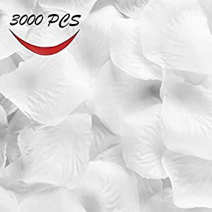 SIBOTER 3000 Pcs Flower Petals White Red Silk Rose Artificial Flower for Wedding Party Deecoration 51