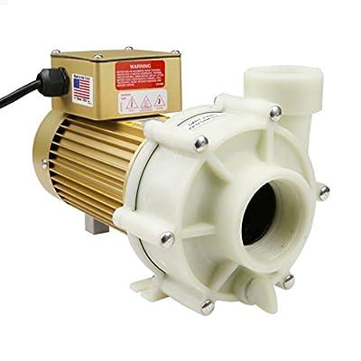 Reeflo Dart/Snapper Gold Hybrid Pump