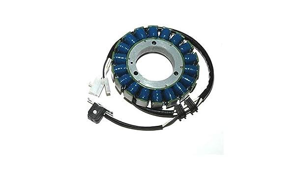 ELECTROSPORT esg610 Estator Yamaha V-Star 1100 - de alta potencia: Amazon.es: Coche y moto