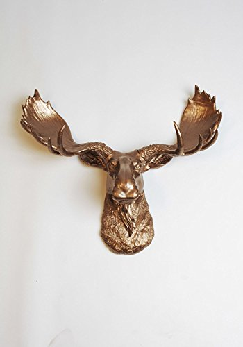 The Cola Hanging Wall Mount Moose Head Sculpture (Wall Mount Sculpture)