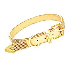 Vanderpump Pets The Giggy 2015 Commemorative Gold Collar