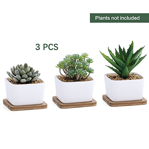 3.8 Inch White Ceramic Contemporary Square Design Succulent Plant Pot/ Cactus Plant Pot With Bamboo Tray - Pack of 3