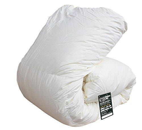 ハンガリー産ホワイトマザーダックダウン95% ツインキルト 羽毛布団 ダウンパワー440 日本製 (シングル) B00DH8YIQO シングル シングル