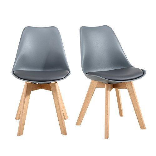NOBPEINT Eames-Style Mid Century Dining Chairs,Set of 2 414u1cGxFtL