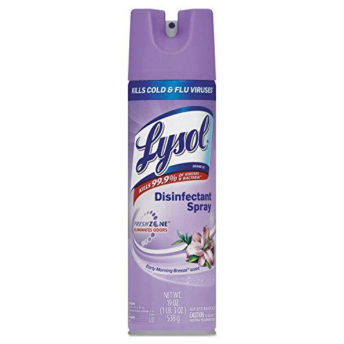 Lysol 80834CT Disinfectant Spray, 19oz, 12/CT, Early Morning (Reckitt Germicidal Cleaner)