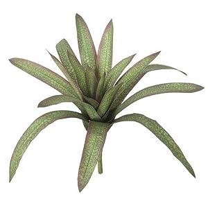 15 Inch Soft Touch Bromeliad Plant Autograph Foliages 72