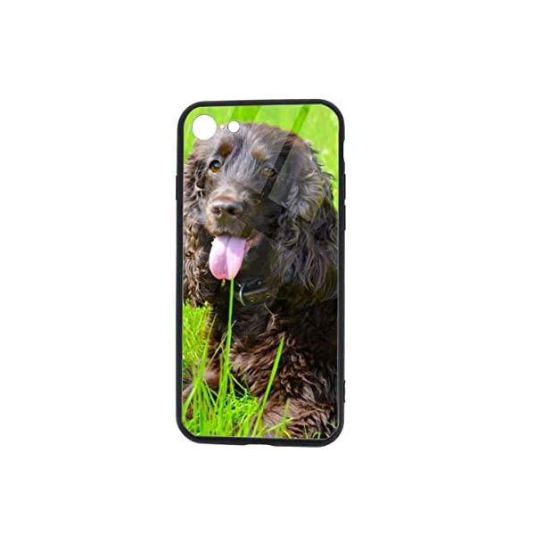 Irish Water Spaniel iPhone 7 /iPhone 8 Compatible Tempered Glass Phone Case Fashion Hard Glass Back Cover 1