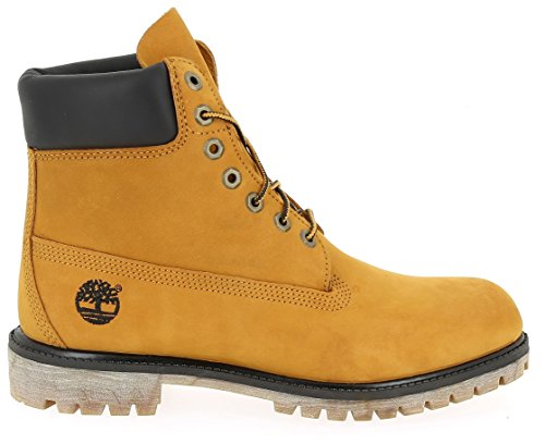 TIMBERLAND 6 INCH BOOTS Oro (Giallo)