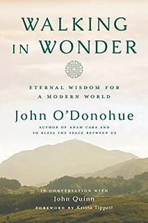Book Cover: Walking in Wonder: Eternal Wisdom for a Modern World