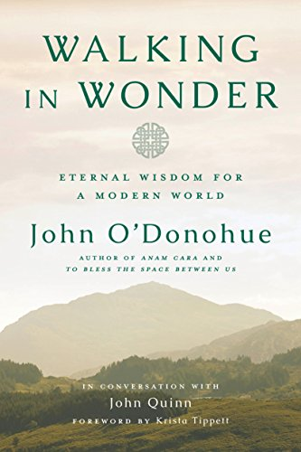 Cover of Walking in Wonder: Eternal Wisdom for a Modern World
