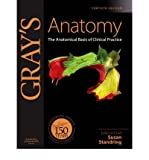 Gray's Anatomy : The Anatomical Basis of Clinical Practice, Elsevier - Health Sciences Division, 0443066833