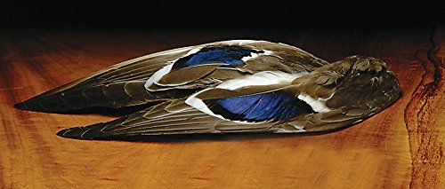 Mallard Whole Wing Pair (Fly Tying Wing)