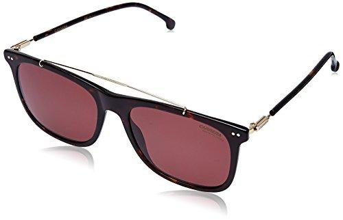 Sole Pink Havana dark Occhiali 086 pink 55 Marrone In Avana Carrera s Da 150 150 Scuro Polarizzato 1t6wAa
