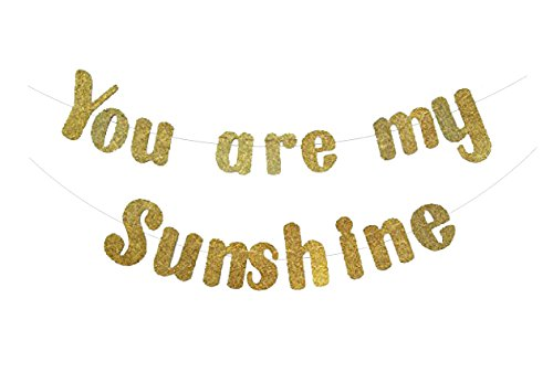 You Are My Sunshine Banner in Gold Glitter for Baby Shower (DIY)