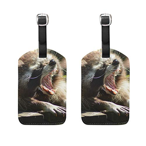 MUOOUM Open Mouth Funny Raccoon Luggage Tages Travel Labels Suitcase Bag Tag with Name Address Cards 2 Pcs Set -