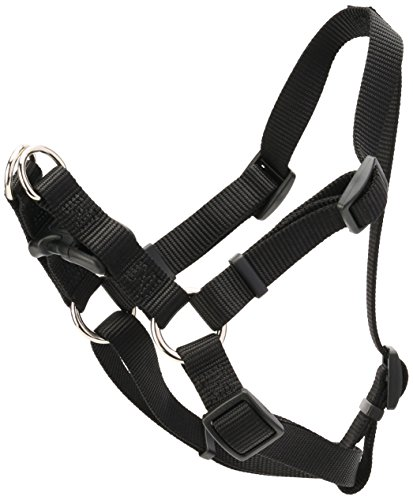 Coastal Pet Products DCP6645BLK Nylon Comfort Wrap Adjustable Dog Harness, 3/4-Inch, Black