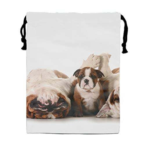 (Party Favors Supplies Bags for Girls, 1 Pack Kids Drawstring Bag Bulldog)