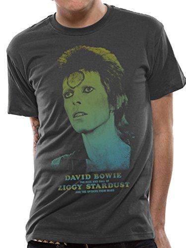 David Bowie Offiziell Herren Damen T Shirt Top T-shirt Ziggy Stardust - Dunkelgrau, Herren, M