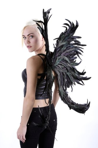 Zucker Feather Products Decorative Natural Half Bronze Wings, Large, Black (Black Feather Wings)