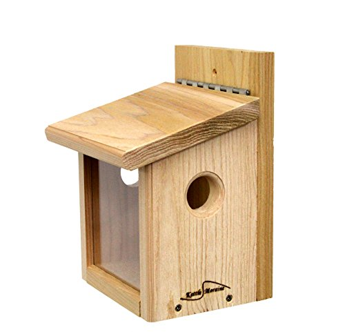 Kettle Moraine Cedar Post Mount Bluebird Mealworm Feeder