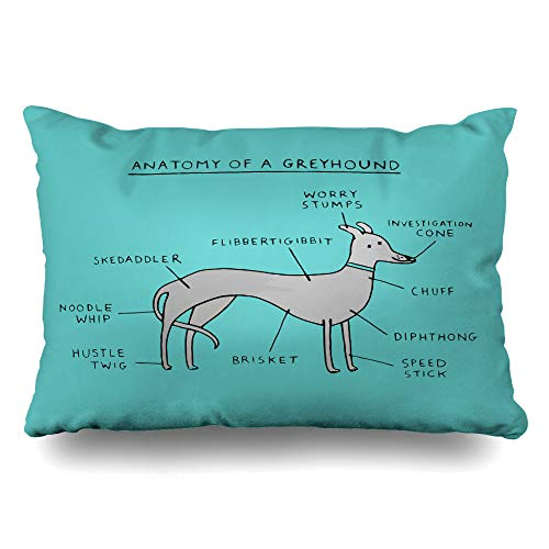 InnoDIY Throw Pillow Covers Greyhound Anatomy Pillowslip Queen Size 20
