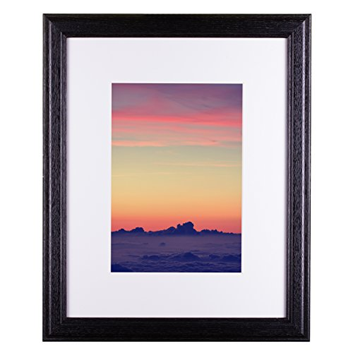 Craig Frames Wiltshire 236 Simple Hardwood Picture Frame with Single White Mat Displays a 18 x 24 Inch Print with The Mat or 22 x 28 Inch Without The Mat Black