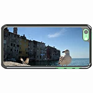 iPhone 5C Black Hardshell Case gulls birds buildings sea Desin Images Protector Back Cover