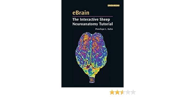 Ebrain The Interactive Sheep Neuroanatomy Tutorial 9780878933808