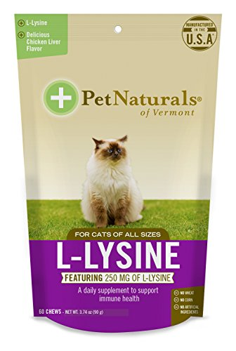 L-Lysine Chews for Cats, Immune and Respiratory Support Supplement, 60 Bite Sized Chews (3.74oz)